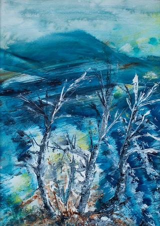 Squally Loch Insh