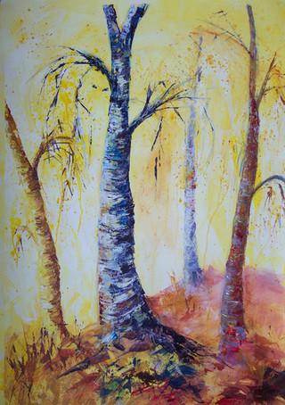 Bold Birches