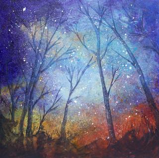 StarryStarryNight (1).jpg
