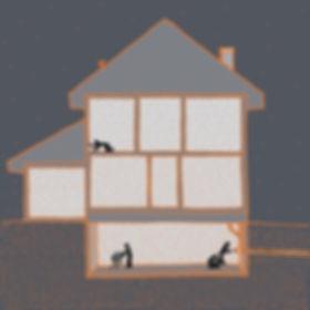 Radon, sewer scope, asbestos and mold testing