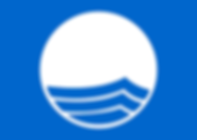 1200px-Blue_Flag_Logo.svg.png