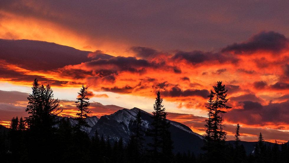 Heavenly Sunset  Wax Melts