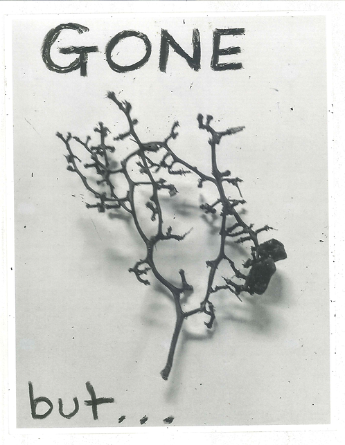 GONE, but...