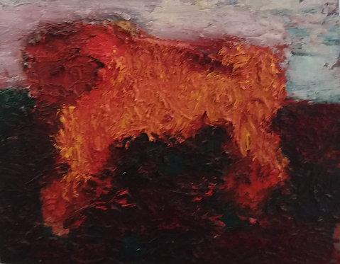 (violence) bull