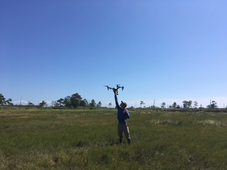 Flying the Drone at Goodwin Island