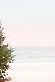 SSS Ocean Vibes 5.jpg