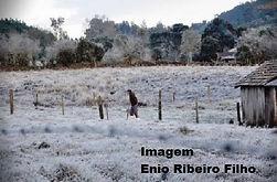 cronica Neve.jpg