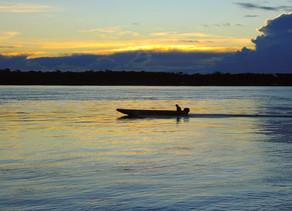 Porto Velho e seu potencial econômico, sustentável e sua riqueza natural, pelo escritor Júlio Olivar