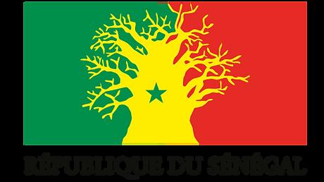 logo-rep-sn-1.png