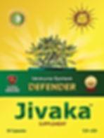 JIVAKA GokuMarket1.jpg