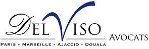 Delviso_logo.jpg