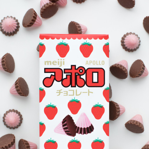 書籍『ニッポン駄菓子工場』 株式会社明治 / アポロ