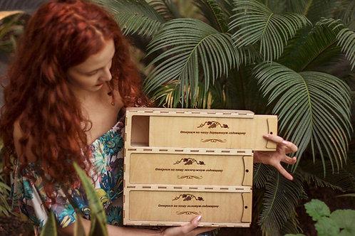Коробка для Вин