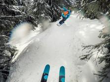 Freeride ski valais.jpg
