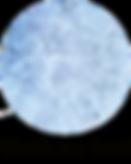 wiat-logo-website3.png