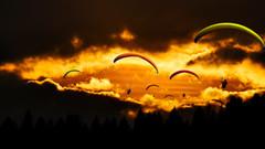 Ohne Fallschirm aus dem Flugzeug? (Kommentar zur AÜG Novelle)