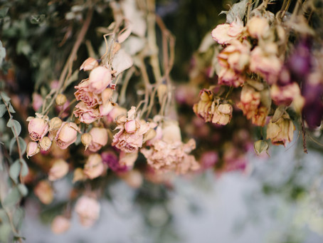 Discovering Dried for Your Budget or DIY Wedding - A Sustainable and Gorgeous Choice