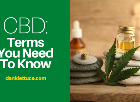 CBD: Terms You Need to Know