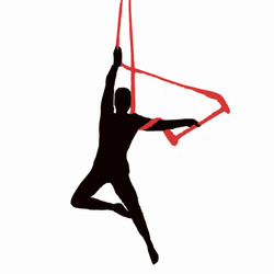 Colleen-trapeze-silhouette