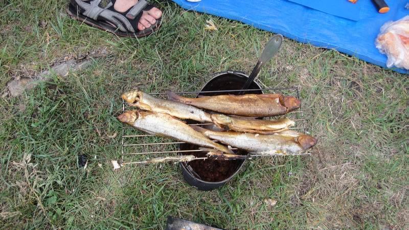 Рыбы на углях