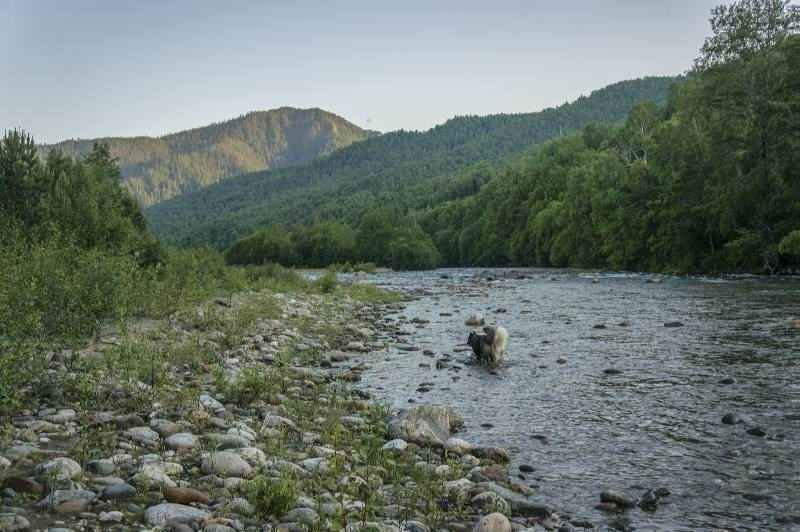 Путешествие Байкал. Река Утулик
