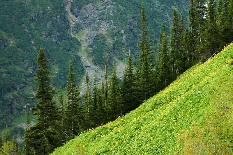 Путешествие Байкал. Горные склоны