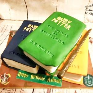 Harry Potter Books Cake, Vanilla Sponge, Chocolate and Red Velvet