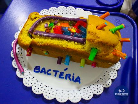 Criando modelos de células comestíveis