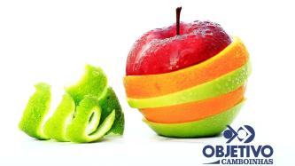 PROJETO: Frutas, cores e sabores
