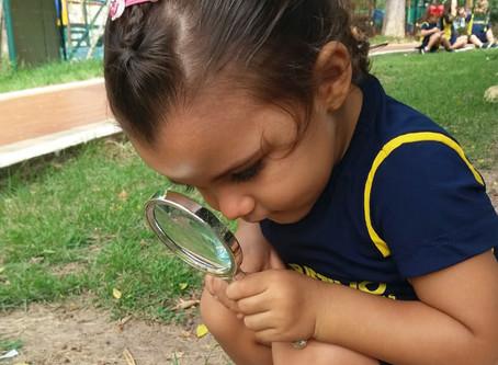 Pediatras lançam manual sobre os benefícios da natureza no desenvolvimento de crianças e adolescente