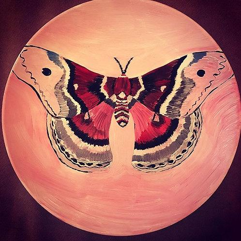Бабочка Cecropia