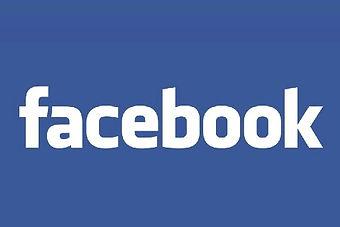 Facebook, Pagine Fb
