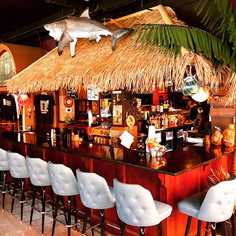 Indoor Palm Trees In Bar