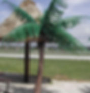 6' palms outside 005.JPG