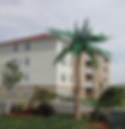Palm Village.jpg