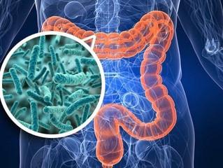LE MICROBIOME: UN NOUVEAU MONDE À CONQUÉRIR