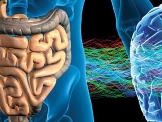 ÉPIGÉNÉTIQUE, PLASTICITÉ CÉRÉBRALE, MICROBIOTE, SPIRITUALITÉ, CANCER: LES (RE)DÉCOUVERTES MÉDICALES
