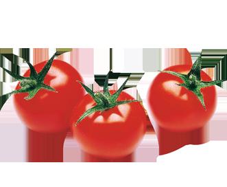 tomate-cerise