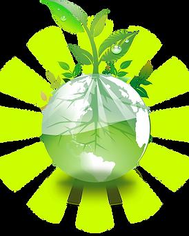 earth plants
