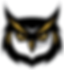 U9 Owls
