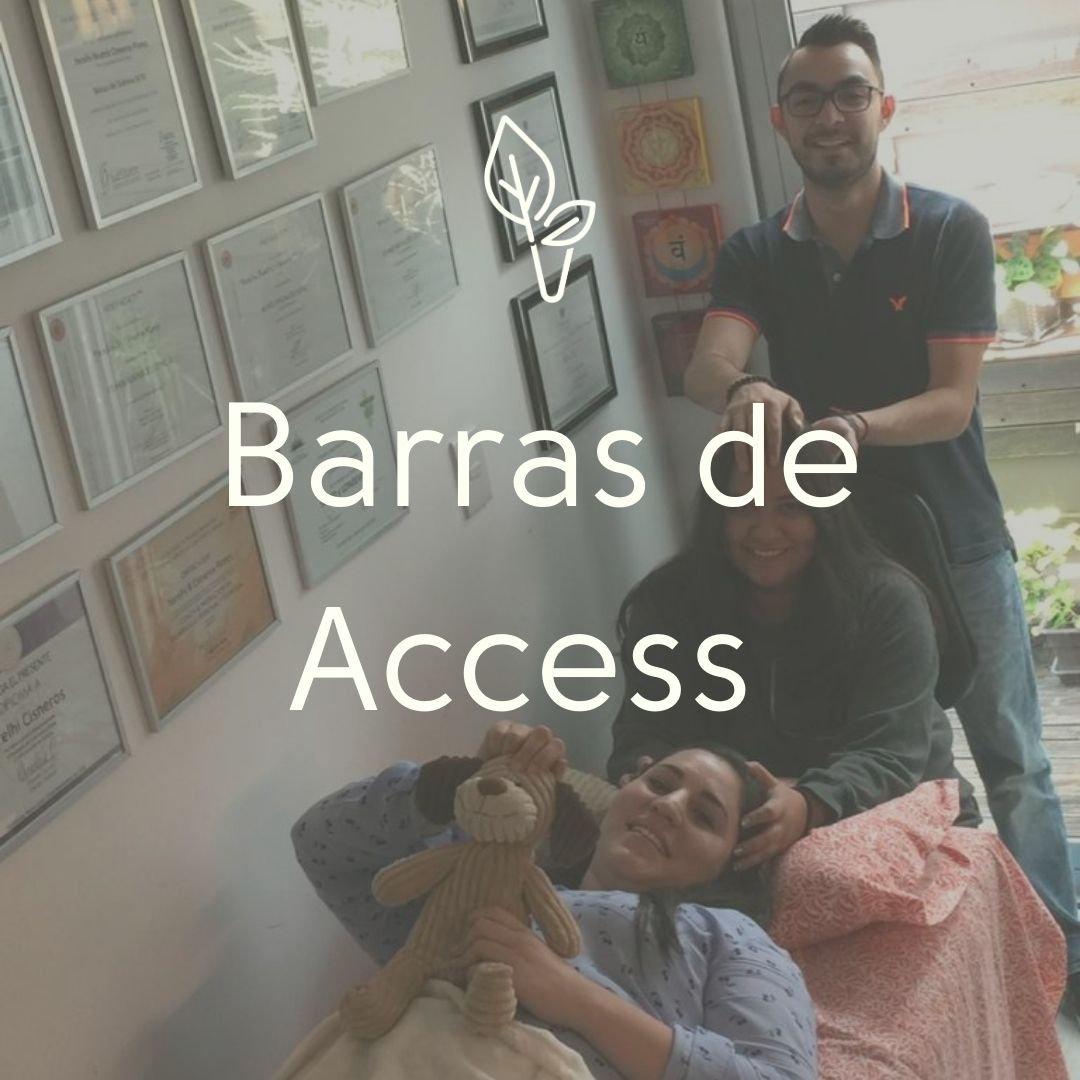 Facilitación de Barras de Access
