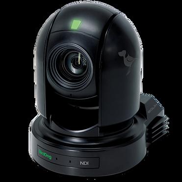 BIRDDOG P200, PTZ Kamera mit NDI / SDI / HDMI Out