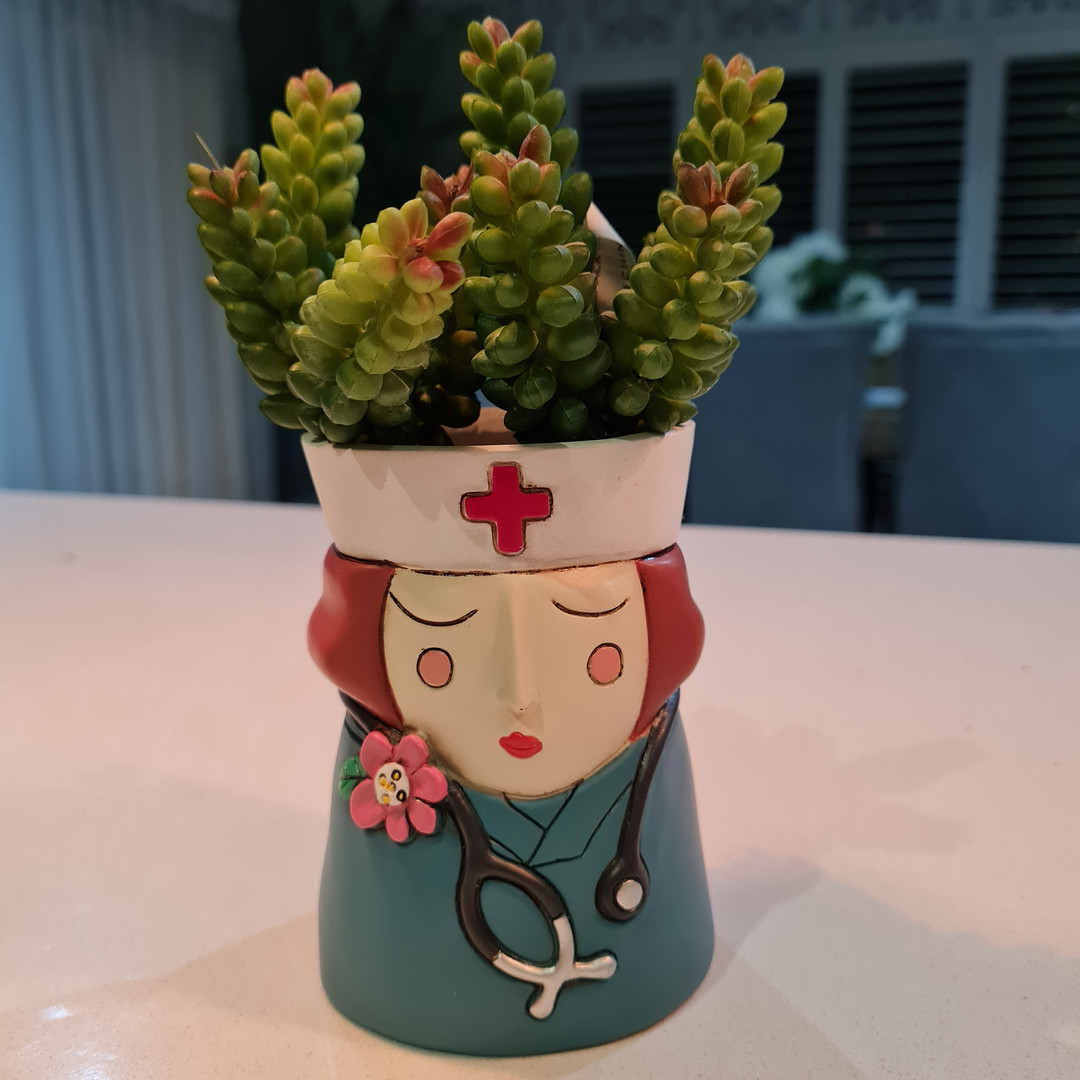 Baby Nurse Planter Only $29.99