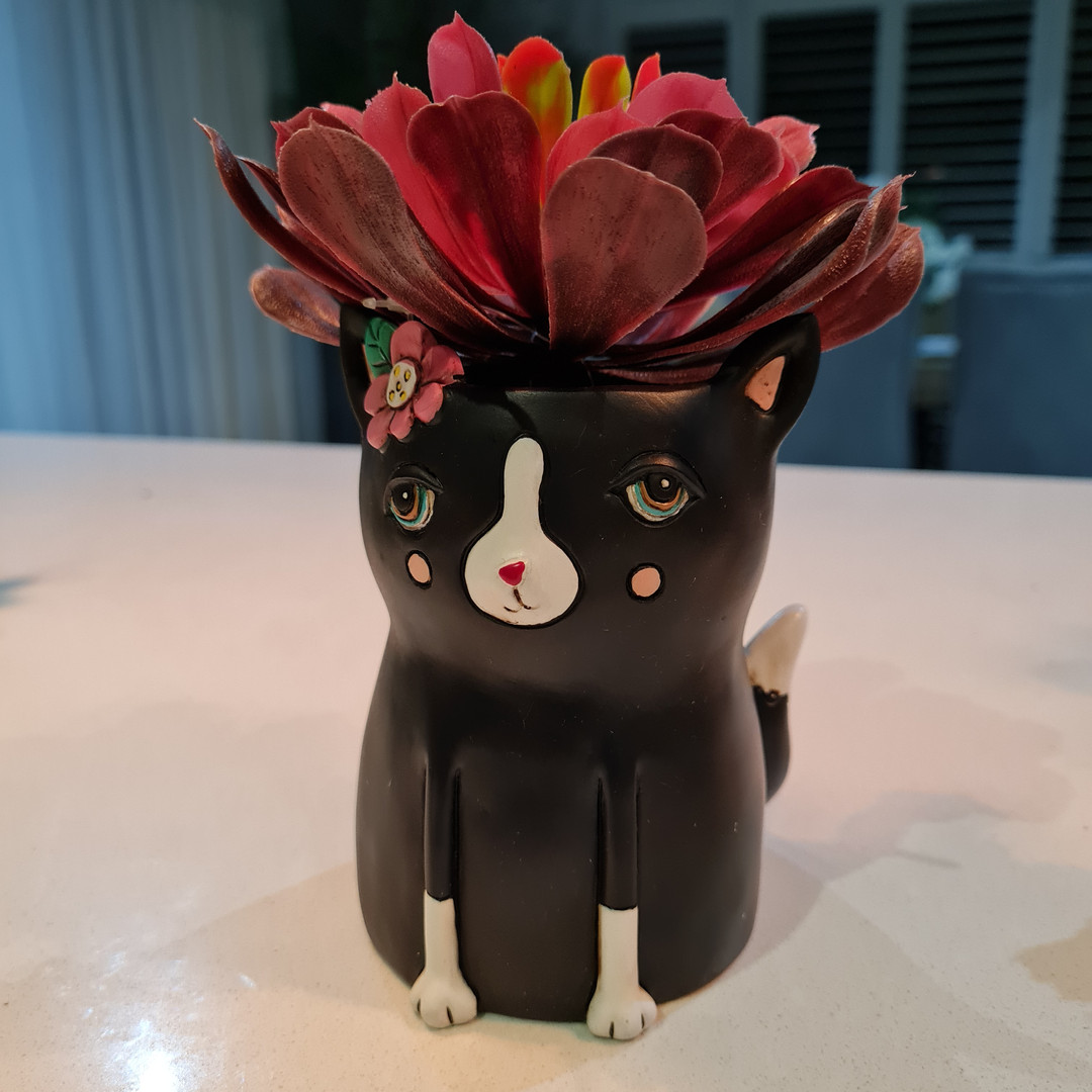 Baby Cat Planter Only $29.99