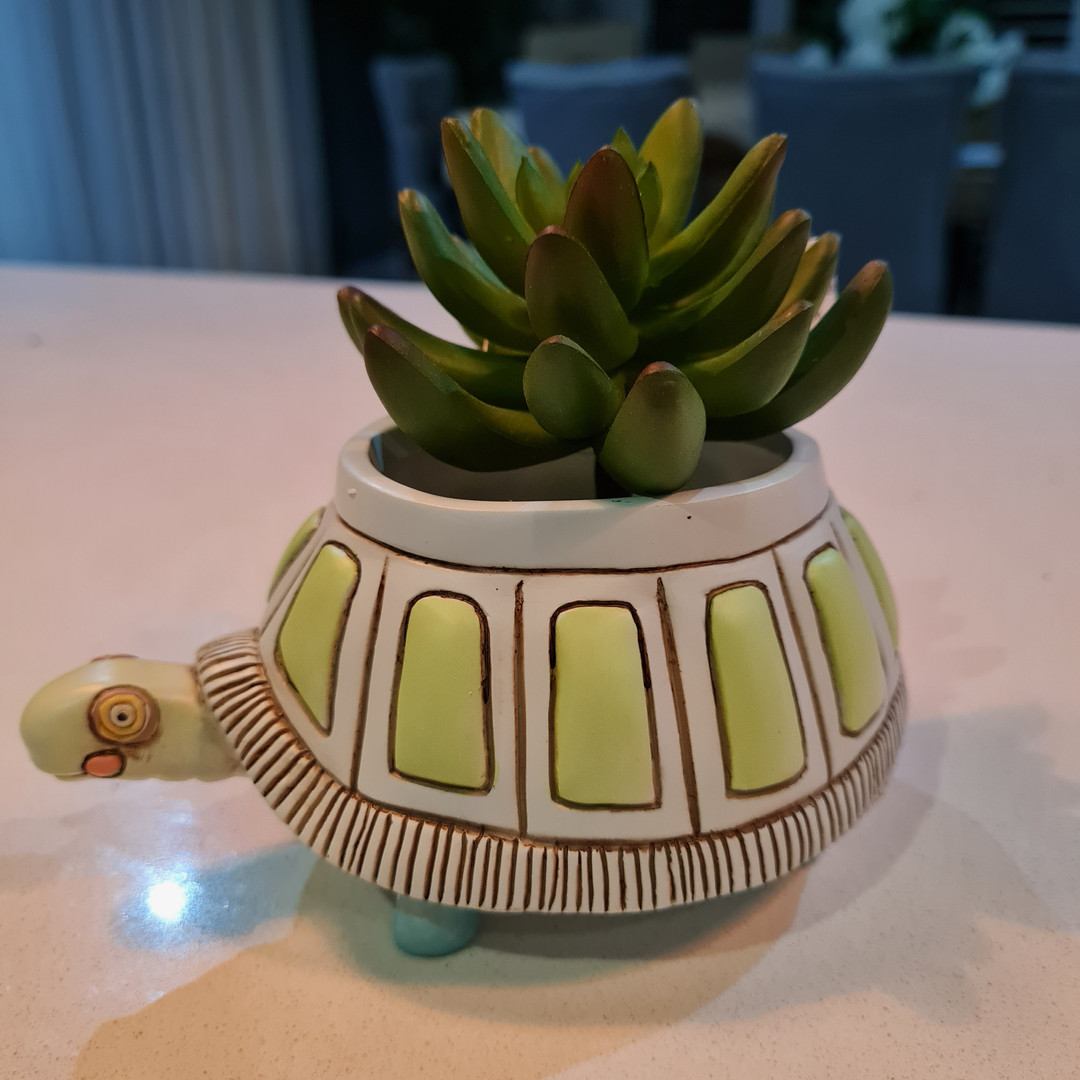 Baby Myrtle Turtle Planter Only $29.99
