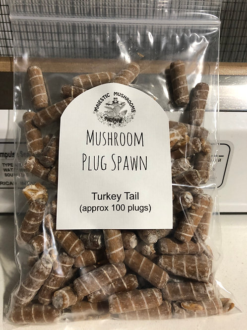 Turkey Tail plug spawn 100X