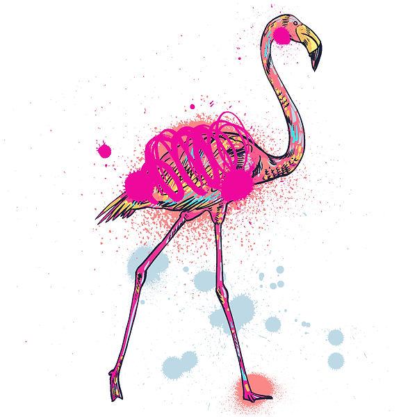 flamingo_0-13.jpg