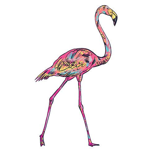 flamingo_0-04.jpg