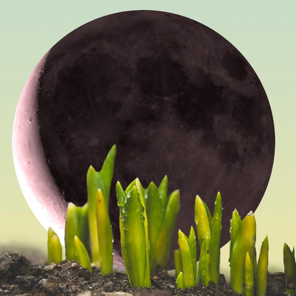 Moon in Aries. Taurus Season 2019