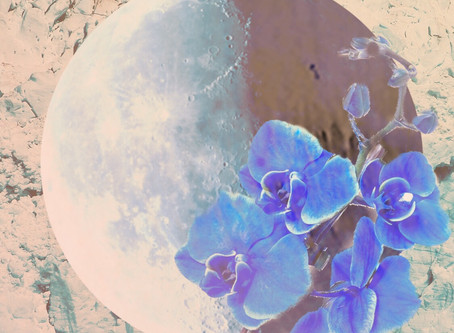 Moon In Aquarius. Taurus Season 2019